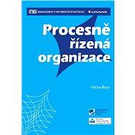 Procesně řízená organizace - Elektronická kniha