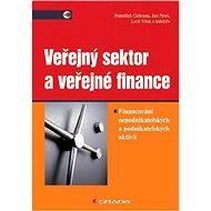 Veřejný sektor a veřejné finance - Elektronická kniha