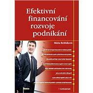 Efektivní financování rozvoje podnikání - Elektronická kniha