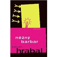 Něžný barbar - Elektronická kniha
