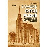Z galerie otců Plzně - Elektronická kniha