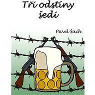Tři odstíny šedi - Pavel Šach