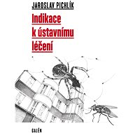 Indikace k ústavnímu léčení - Jaroslav Pichlík