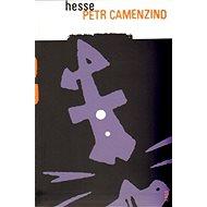 Petr Camenzind - Elektronická kniha