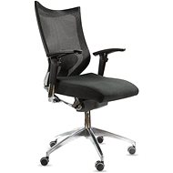SPINERGO Office black - Office Chair