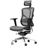 SPINERGO Business černá, VYZKOUŠEJ ZDARMA - Kancelářská židle