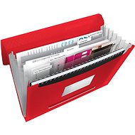ESSELTE Vivida with compartments, red - Briefcase for documents