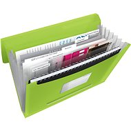 ESSELTE Vivida with compartments, green - Briefcase for documents