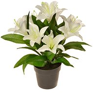 EverGreen Lily in a Pot, Height of 30cm, White Colour - Artificial Flower