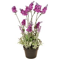 EverGreen Lavender 16 Flowers in a Pot, Height of 38cm, Crimson Colour - Artificial Flower
