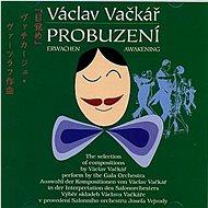Vačkář Václav: Probuzení - CD - Hudební CD