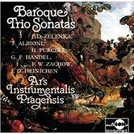 Ars Intrumentalis Pragensis: Baroque Trio Sonatas - CD - Hudební CD