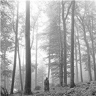 Swift Taylor: Folklore - LP - LP Record