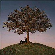 Slowthai: Tyron - CD - Hudební CD