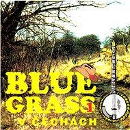 Bluegrass v Čechách 1 - CD - Hudební CD