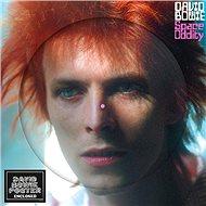 Bowie David: Space Oddity (Limited Picture Vinyl) - LP - LP vinyl