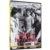 Kuřata na cestách - DVD - Film na DVD