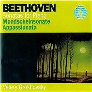 Grokhovsky Valery: Pearls of Classic 11 - CD - Hudební CD