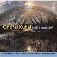 Kukal Ondřej: Veliké stmívání - CD - Hudební CD