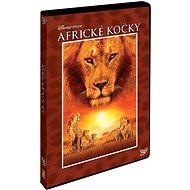 Africké kočky: Království odvahy - DVD - Film na DVD