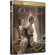 Deceived - DVD - DVD Movies