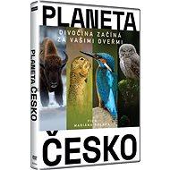 Planeta Česko - DVD - DVD Movies