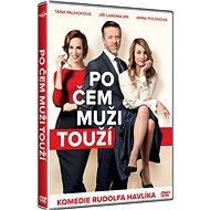 Po čem muži touží - DVD - Film na DVD