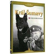 Král Šumavy - DVD - Film na DVD