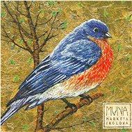 Irglová Markéta: Muna - CD - Hudební CD