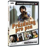Prázdniny pro psa - edice KLENOTY ČESKÉHO FILMU (remasterovaná verze) - DVD - Film na DVD