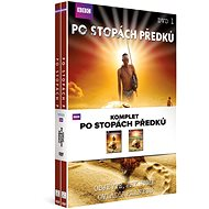 Set In the Footsteps of Ancestors (2DVD) - DVD - DVD Movies