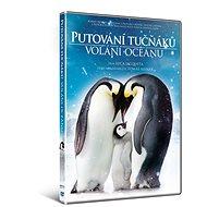 Putování tučňáků: Volání oceánu - DVD - Film na DVD