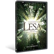 Tajemství lesa - DVD - Film na DVD