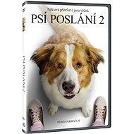 Psí poslání 2 - DVD - Film na DVD