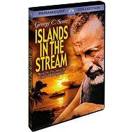 Ostrovy uprostřed proudu - DVD - Film na DVD