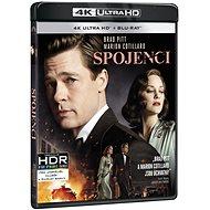 Allied (2 discs) - Blu-ray + 4K Ultra HD - Blu-ray Movies