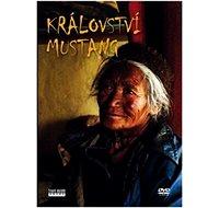 Kingdom of Mustang - DVD - DVD Movies