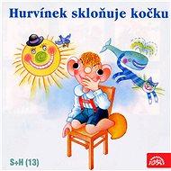 Divadlo S+H: Hurvínek skloňuje kočku - CD - Music CD