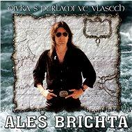 Brichta Aleš: Dívka s perlami ve vlasech - CD - Hudební CD
