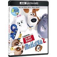 The Secret Life of Pets 2 (2 discs) - Blu-ray + 4K Ultra HD - Blu-ray Movies