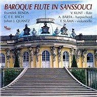 Baroque Flute In Sanssouci - CD - Hudební CD