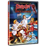 Scooby-Doo a Duch labužník - DVD - Film na DVD