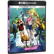 Birds of Prey (And the Fantabulous Emancipation of One Harley Quinn) (2 discs) - Blu-ray + 4K Ultra HD - Blu-ray Movies