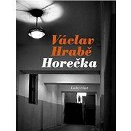 Horečka - Kniha