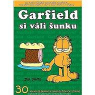 Garfield si válí šunku: Číslo 30 - Kniha