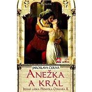 Anežka a král: Jediná láska Přemysla otakara II. - Kniha