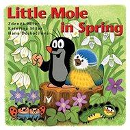 Little Mole in Spring - Kniha