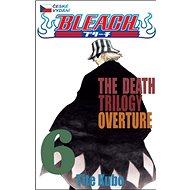 Bleach 6 - Kniha
