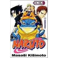 Naruto 13 Rozuzlení - Kniha