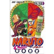 Naruto 15 Narutův styl - Kniha